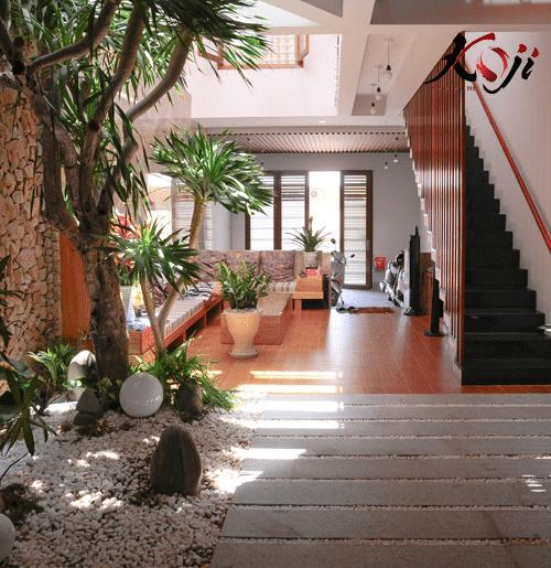 mẫu 5: Thiết kế đơn giản trong nhà với cây xanh giúp điều hòa không khí