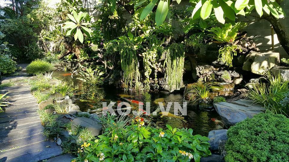 Hồ cá koi ngay trong sân vườn nhà