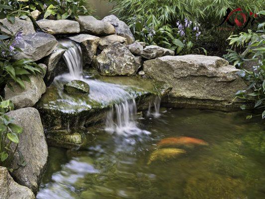 thiết kế thác nước hồ cá koi