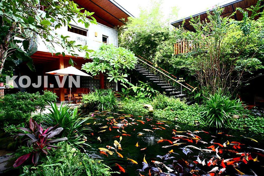 Hồ cá koi sân vườn cafe