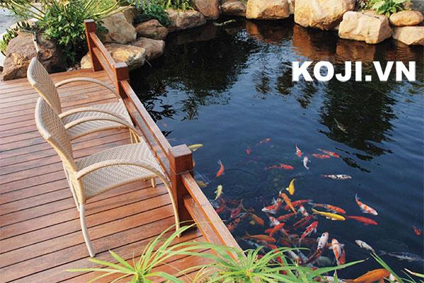 Mẫu sân vườn kết hợp hồ cá koi