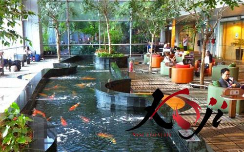 Vị trí đặt hồ cá Koi tại nhà hàng