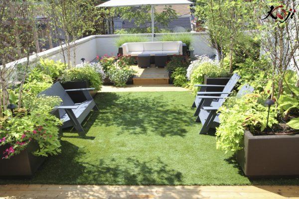 Trồng cây to trên sân thượng giúp điều hòa không khí