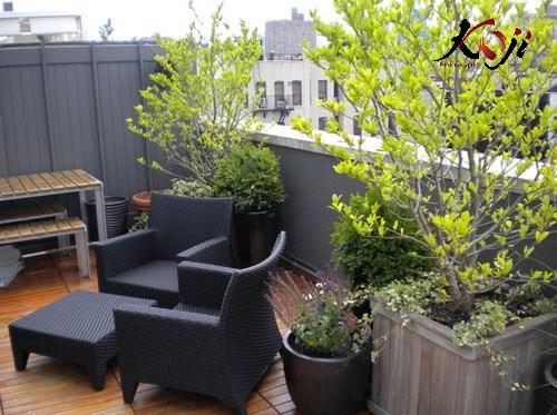 Kết hợp bàn ghế cây cảnh