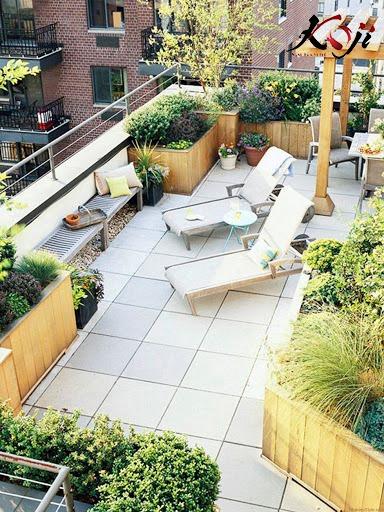 10 loại cây nên trồng trên sân thượng