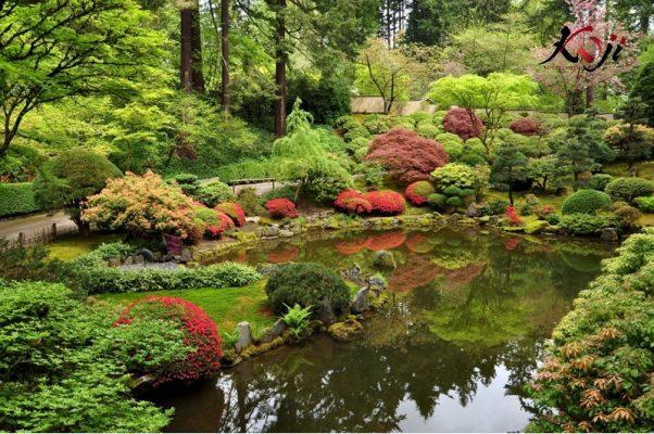 Kiểu sân vườn Nhật kết hợp hồ nước