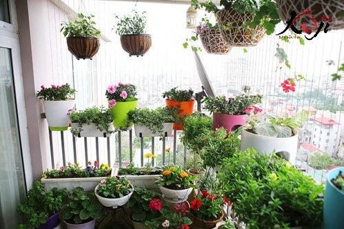 Hình ảnh tự làm sân vườn nhỏ đẹp ngay ban công nhà