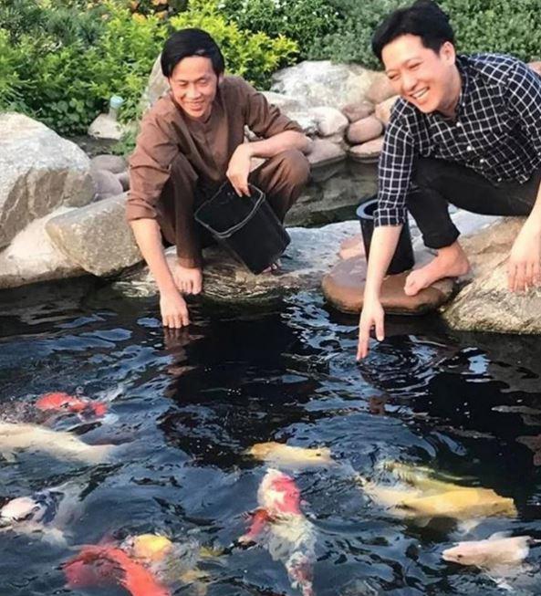 Hồ cá koi tiền tỉ của danh hài được rất nhiều nghệ sĩ quan tâm và hứng thú