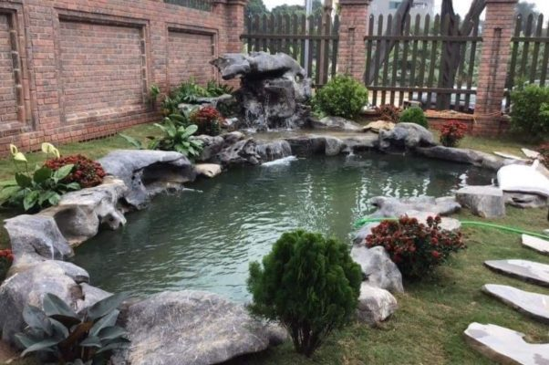 Tiểu cảnh nước kết hợp hồ cá koi ngoài sân vườn