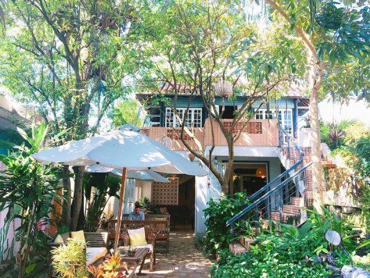 Quán cafe sân vườn luôn là điểm đến của nhiều vị khách yêu thiên nhiên