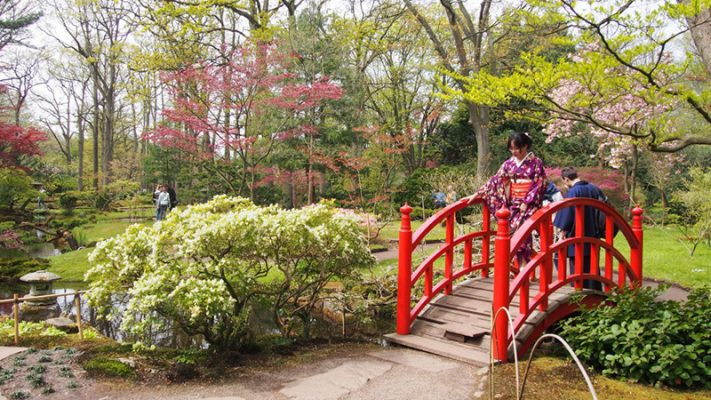 Cầu gỗ Nhật là một trong những biểu tượng của trang trí