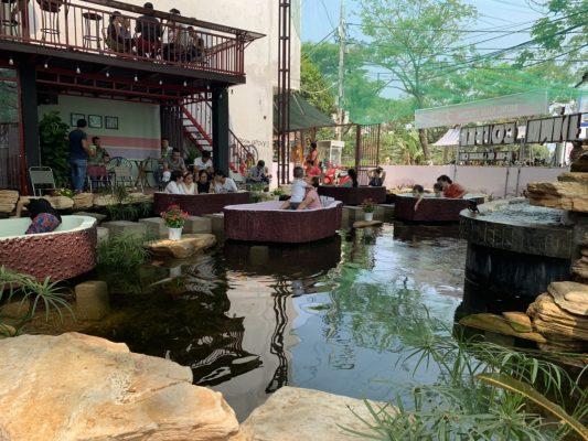 Không khí trong lành hòa mình vào thiên nhiên thư giãn cùng hồ cá koi
