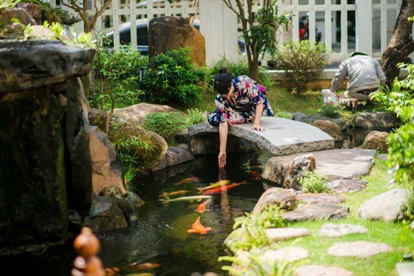 Tiểu cảnh hồ cá koi Nhật ngoài sân vườn