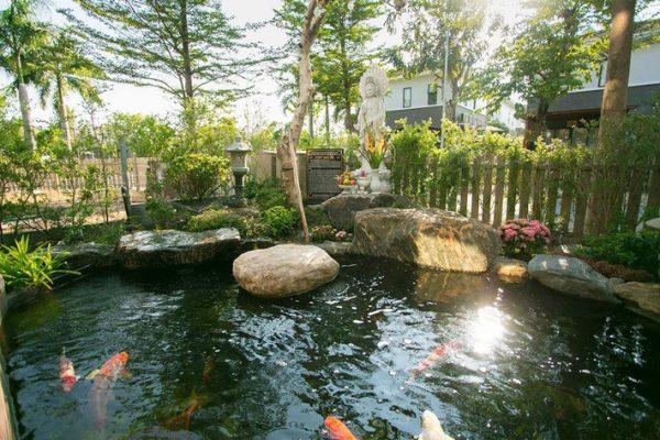 Dự án thi công hồ cá koi sân vườn đơn giản nhưng rất đẹp