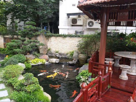 Mẫu hồ cá koi sân vườn két hợp với tiểu cảnh