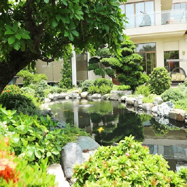 Công trình hồ cá koi sân vườn của biệt thự ở Hà Nội
