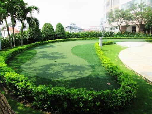 Sân vườn trải thảm cỏ xanh và trang trí hàng cây nhỏ xung quanh tạo điểm nhấn