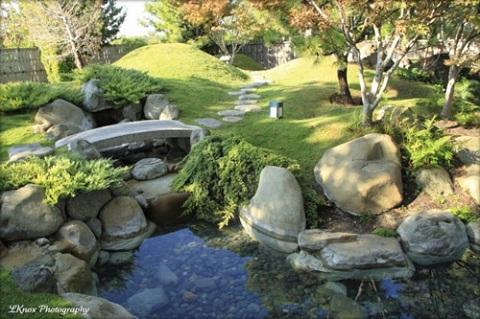 Tiểu cảnh cầu Nhật với thảm cỏ xanh làm điêu đứng người xem