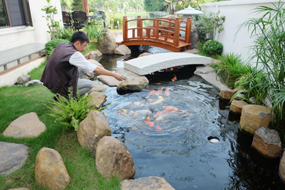 Trang trí thêm tiểu cảnh cây cầu Nhật ở sân vườn