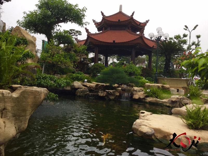 Hồ cá koi quán cafe sân vườn Lưu Gia Trang