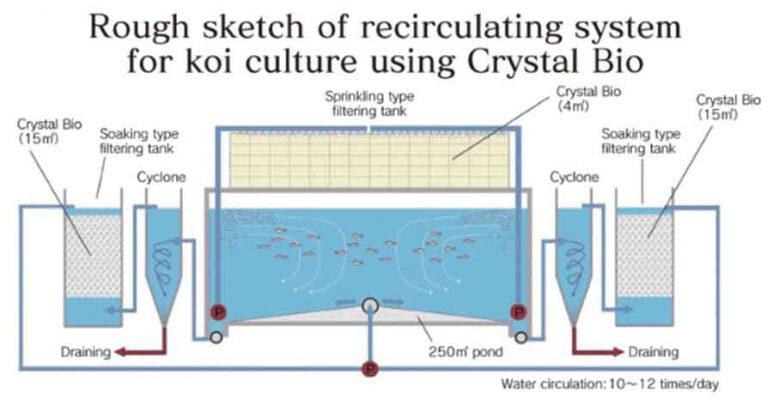 Mô hình lọc hồ cá koi
