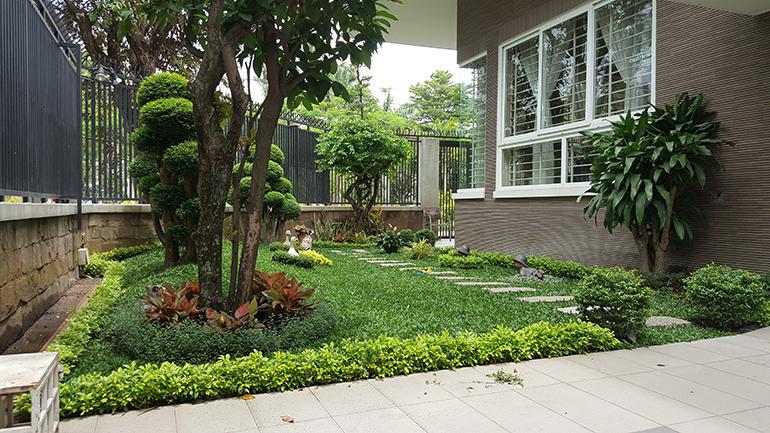 Sân vườn nhà biệt thự