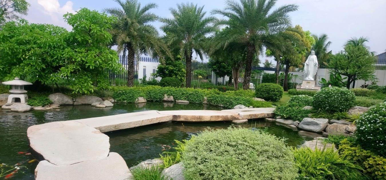 Ý tưởng ngồi thư giãn giữa một vườn rau củ sạch phía sau nhà