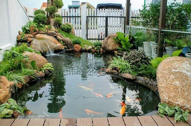Theo phong thủy, hồ cá trước nhà sẽ giúp thu hút vượng khí cho gia chủ
