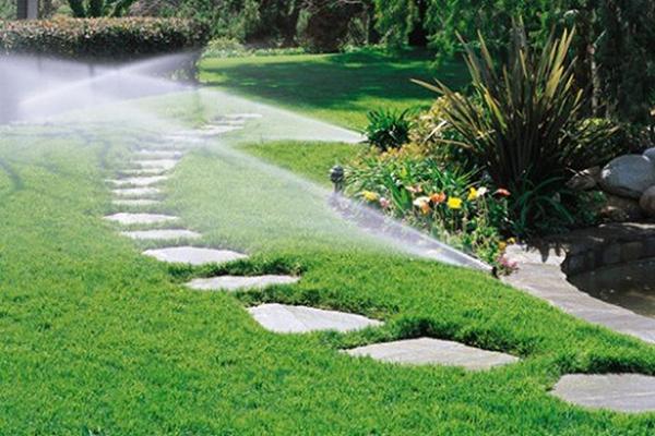 Lắp đặt hệ thống tưới tiêu để cung cấp đủ nước cho cây cối sau nhà
