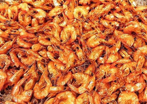 Tép rang - Thức ăn bổ sung đạm động vật an toàn cho cá koi