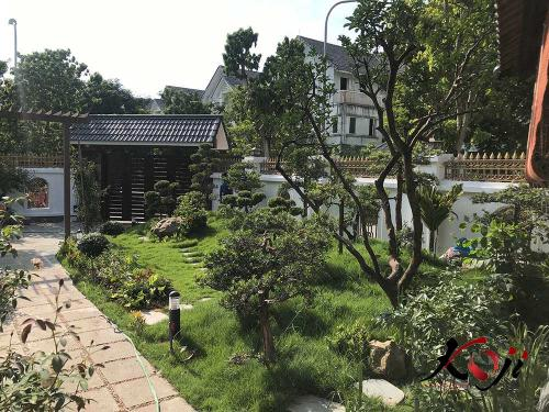 thi-cong-san-vuon-IMG_1697