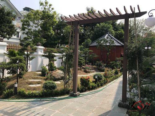 thi-cong-san-vuon-IMG_1750